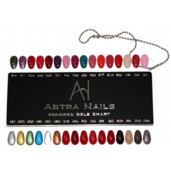 Color Gel chart - cartella colori gel 2 - ACCESSORI - 2088-2