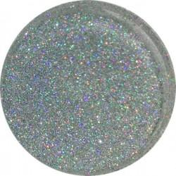 Glitter 10 Gr - GLITTERS - 5003