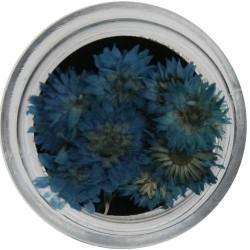 Fiori Secchi Colorati - NATURAL DRIED FLOWER - 5523-422