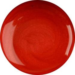 Gel color ER Anjou    5 gr / 15 gr - ER GELS - 6245