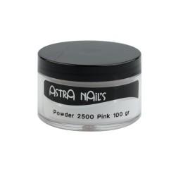 Powder 2500 Rosa 100 Gr - POWDER - 1025